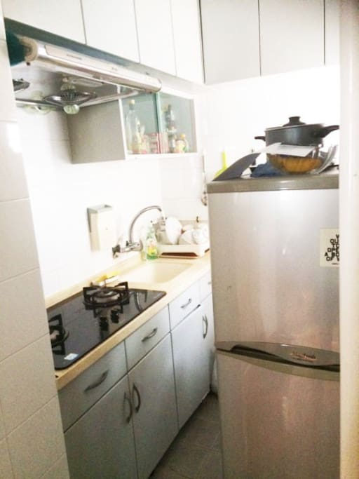 Fridge/freezer, 2 hobs and small oven.