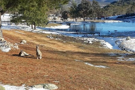 """Kooringal"" Lake Eucumbene, Snowy mountains."