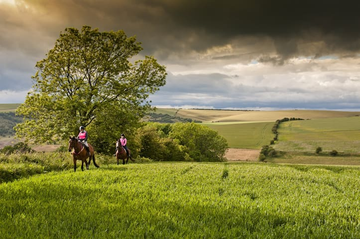 South Downs, aprox 4 miles away. Cycling, country pubs, horse and pony riding (available for lessons, activities, pony camps and events)