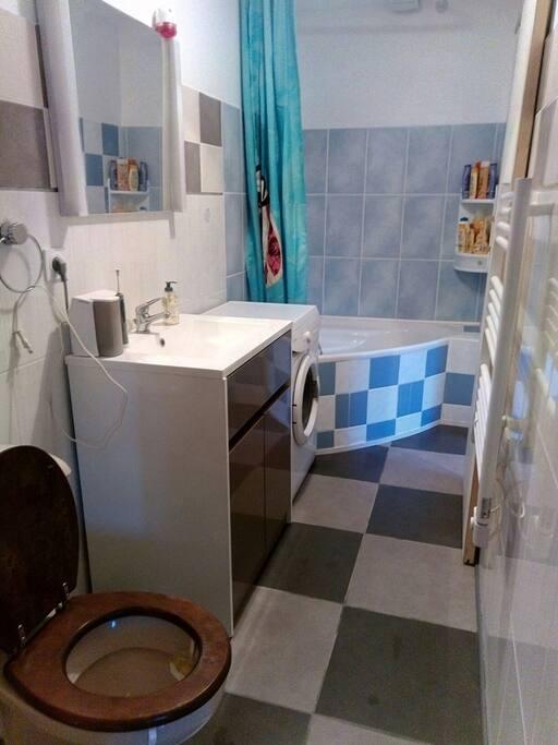Salle de bien avec WC