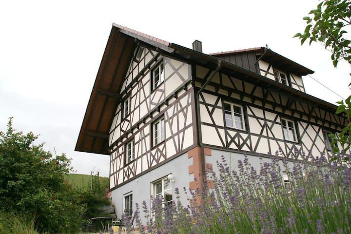 Urlaub auf dem Weingut - im Fachwerkhaus (EG)