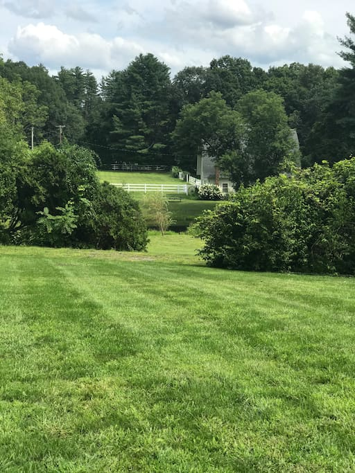 View from front lawn looking toward pond and barn