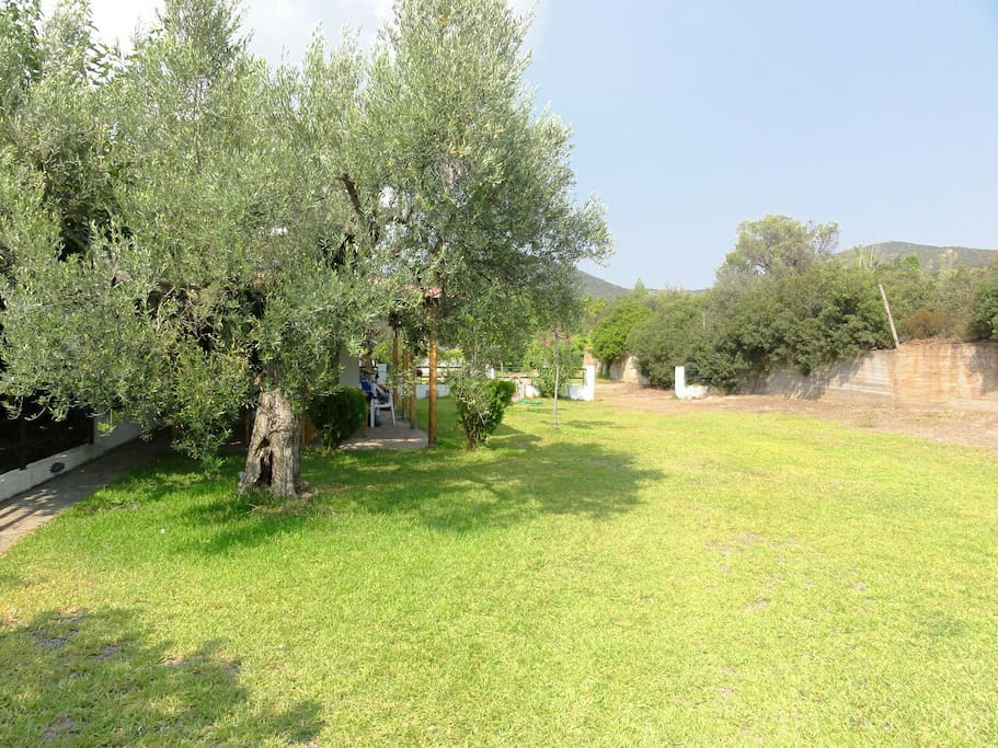 This space is available for common use from the residents of all 5 houses of the house complex!  It is ideal for children to play, among olive trees in a quiet area.