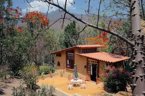 Bungalow Menne, San Pablo Etla, Oaxaca