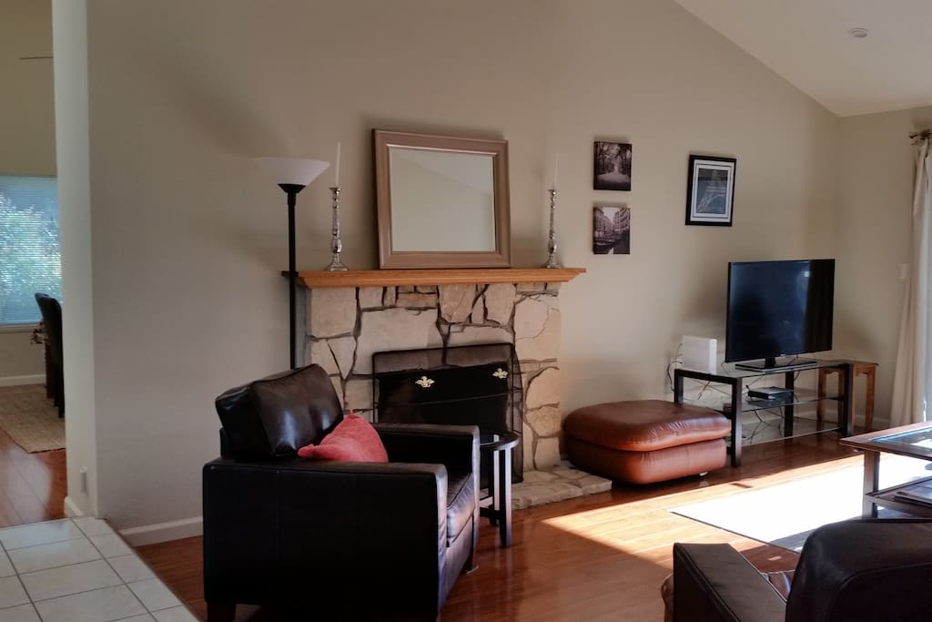 Sunny, comfortable living room with vaulted ceiling