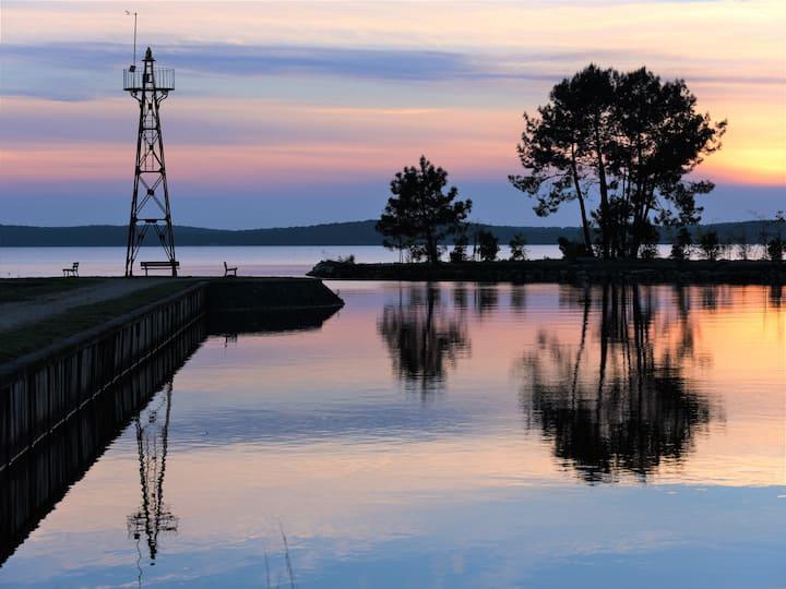 Les phoenix du Suet au bord du lac de Lacanau