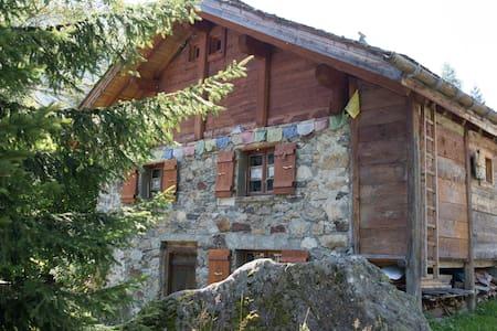 petit chalet Anna - Vallorcine - Cabaña