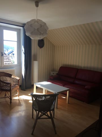 Appartement Saisonnier au bord du Lot - Saint-Geniez-d'Olt - Apartment