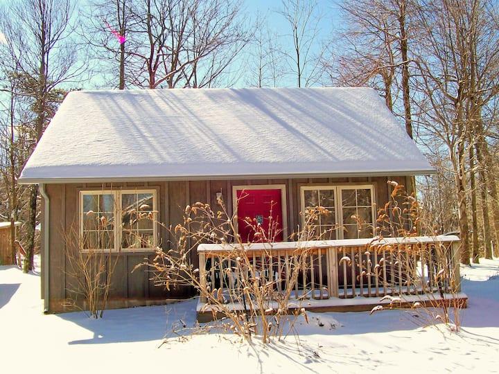 Cabin #2 (Handicap accessible)-Royal Oaks Retreat