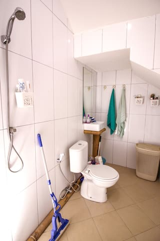 Bathroom downstairs. Used by hosts when house is full. Each room has a  private bathroom so this is just a connivence.