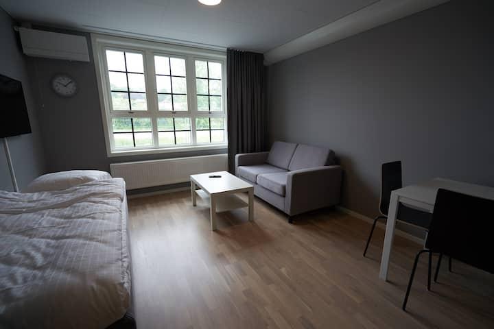 2 bed studio apartment-kitchen-bath-TV-wifi (1009)