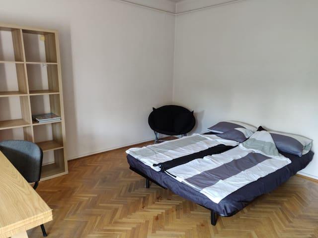 Private Room with Terrace in Gödöllő
