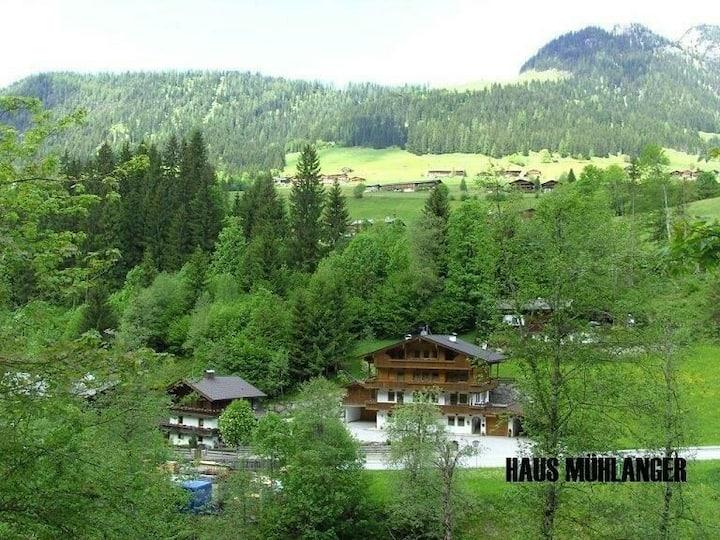 Eine sehr gemütliche  Wohnung ( 3 ) in Alpbach