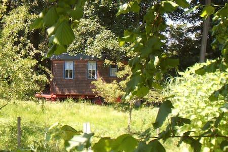 Schäferwagen auf Hof Schwarzes Moor - Camper/RV
