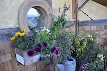 The flower boxes enhance your view as you peer out the window at your stunning surroundings.