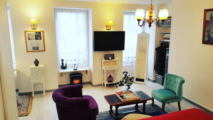 Appartement spacieux, calme, lumineux centre-ville