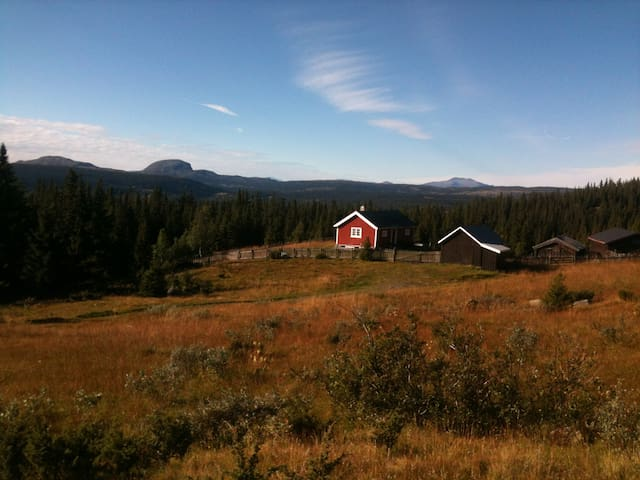 Cozy cottage in a beautiful area - Fagernes - Hytte