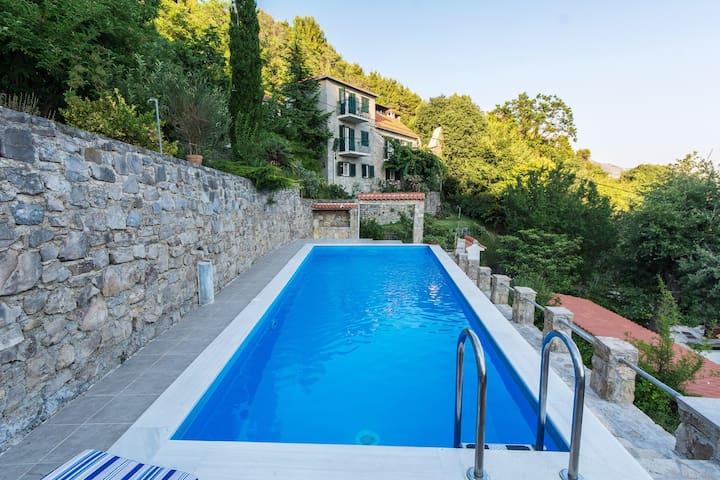 Stone villa with private pool - Žrnovnica - วิลล่า