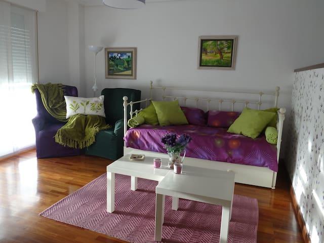 """Apartamento """"loft"""" en Laguardia. Nº R. T. EVI0024"""
