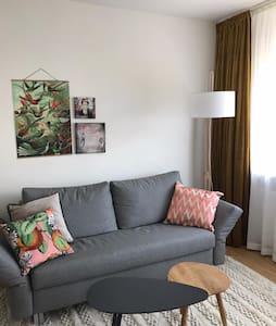 Ruhig gelegenes Appartement im Zentrum von Hameln