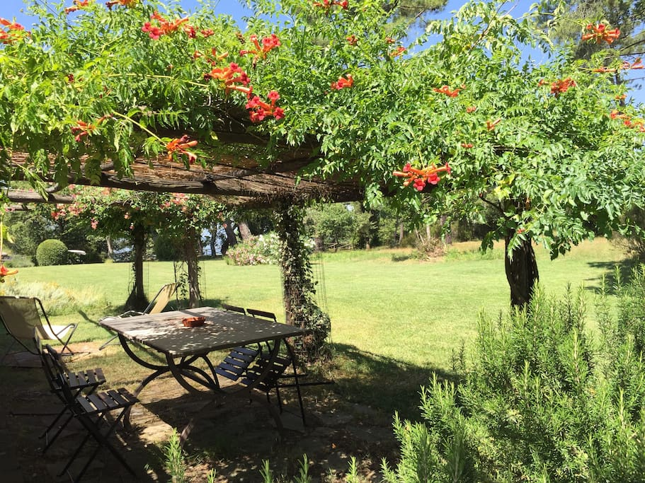 The pergola of the house