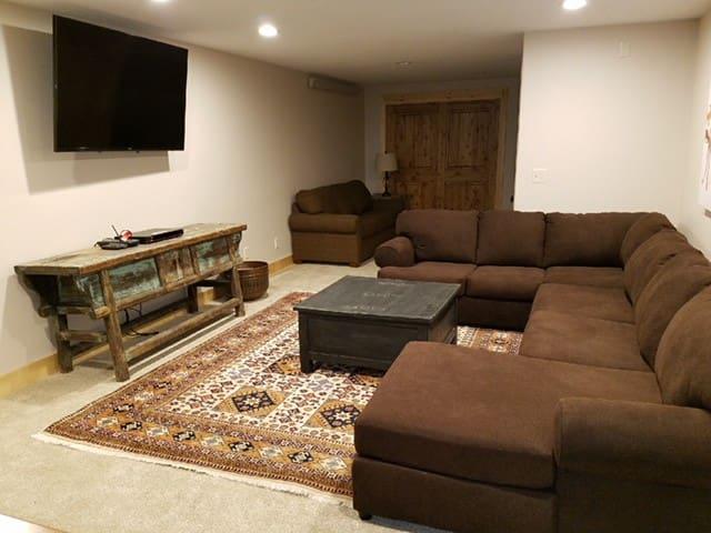 Bottom Floor TV and Dart Room