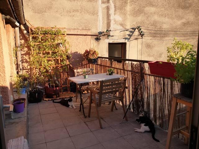 joli T2 terrasse au calme plein centre de Toulouse