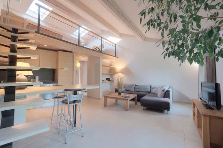 Loft au cœur du village de Valbonne - Valbonne  - Apartment