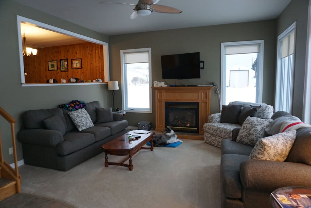Our main living area with a natural gas fireplace, lots of natural lighting and our furry friend Chloey