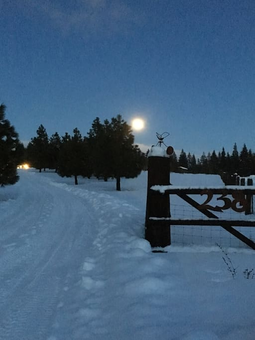 Moon rising at Contentment Acres!