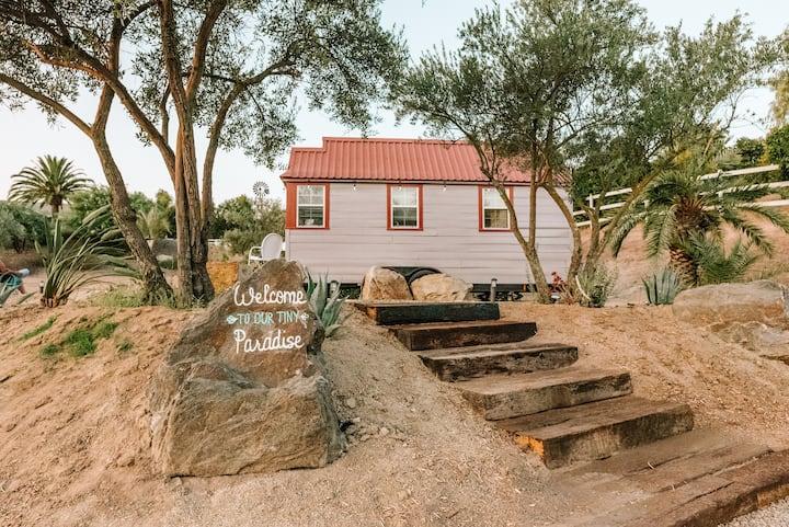 Petite Sirah Tiny Home