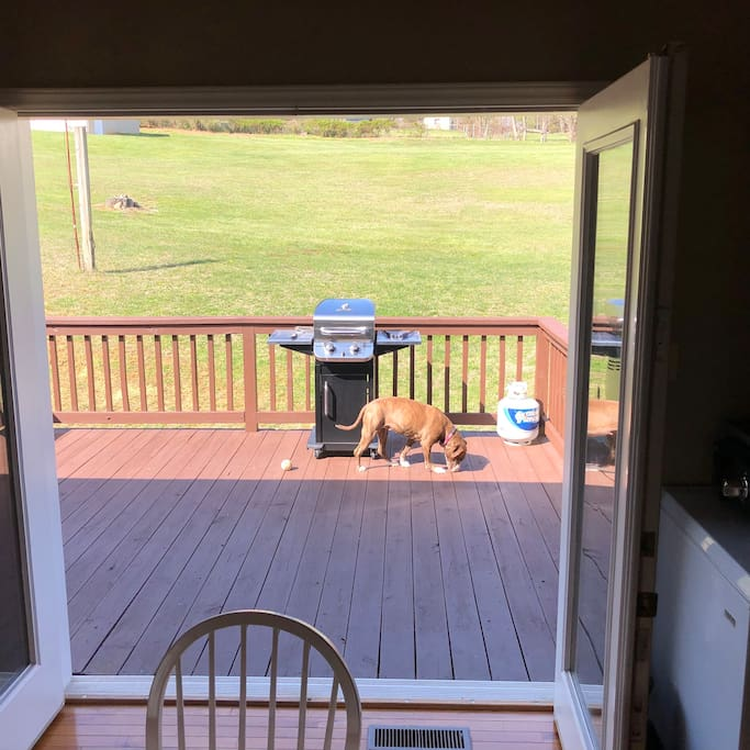 Back porch with grill that is always ready to go