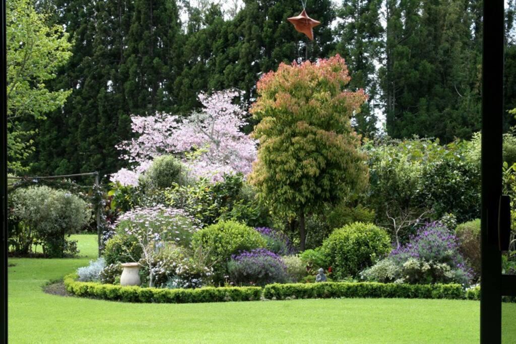 Springtime garden.