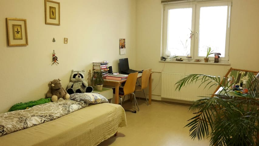 Cozy room close to TU Chemnitz - Chemnitz - Sala sypialna