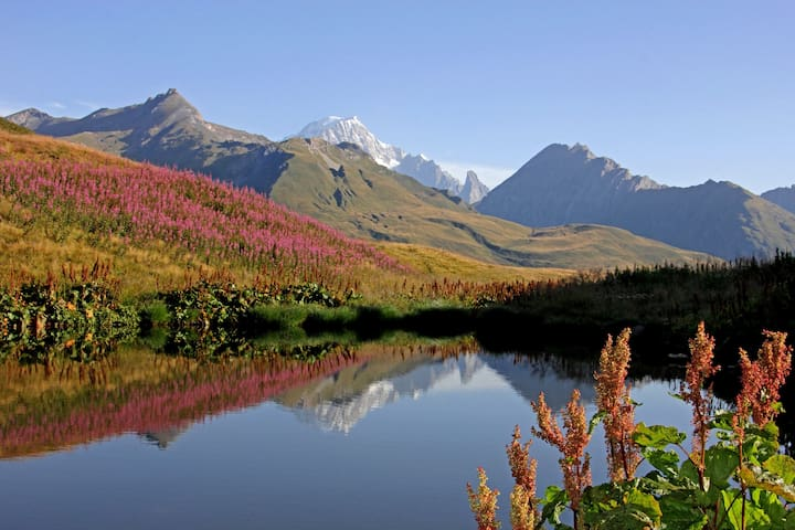 Visit the Alps in the fall and enjoy the colours!
