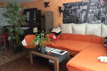 cosy room in Mödling at Vienna - Maria Enzersdorf