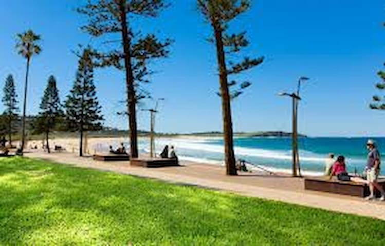 Holiday by the Beach - Dee Why