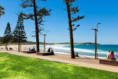 Holiday by the Beach - Dee Why - Pis