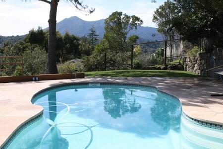 STUNNING SAN FRAN BAY, MT TAM VIEWS Lrg 1 BD, pool - San Rafael