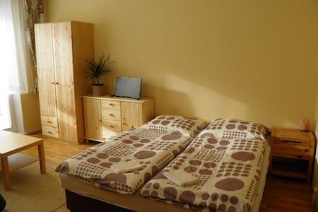 Family friendly apartment in Tatranska Lomnica - Vysoké Tatry - Lejlighed