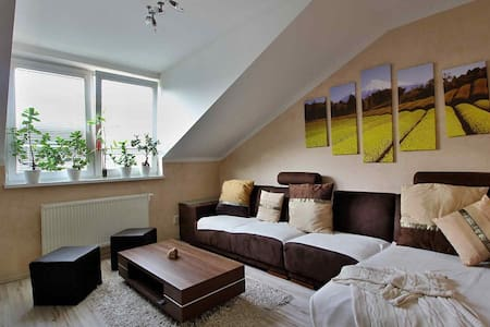 Stylish room only 6km from city center - Bratislava - Byt