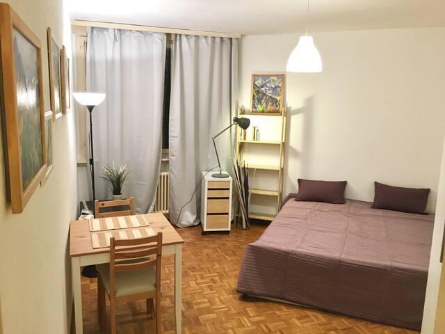 Cosy quiet studio, top location - Genève - Flat