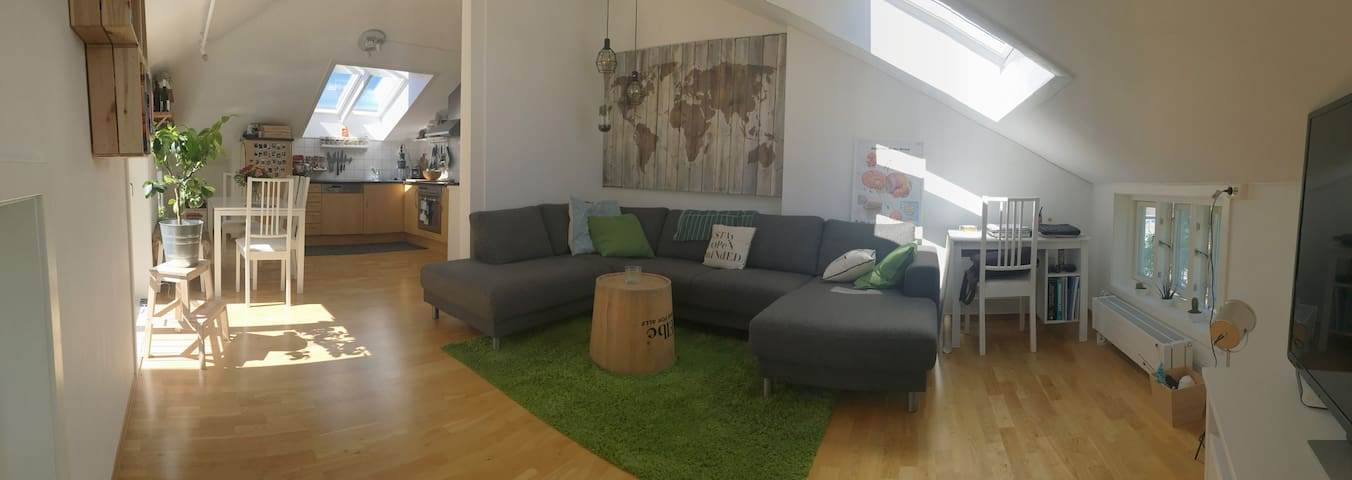 Bright and cosy central apartment