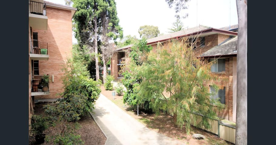 Cozy apartment next to the Station - Meadowbank - Apartament
