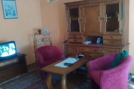 Stan na dan Tuzla 061 477809