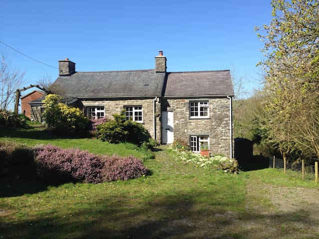 Tyn y Fron Cottage