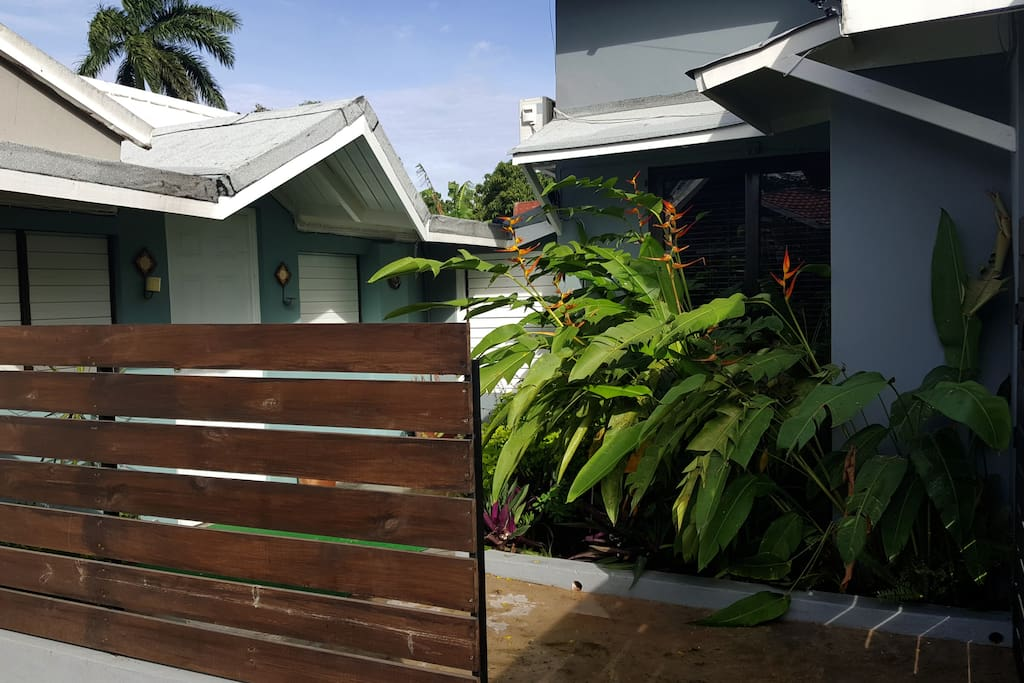 """Secluded courtyard entry adorned with """"Bird of Paradise"""" Plants"""