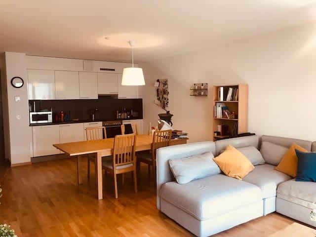 Appartement neuf et lumineux au centre de Vevey