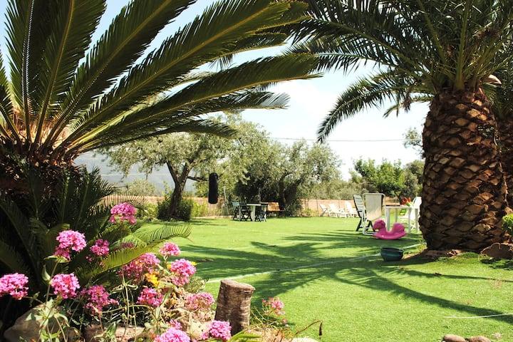 Alghero Villa Valalla con giardino per 8 ospiti