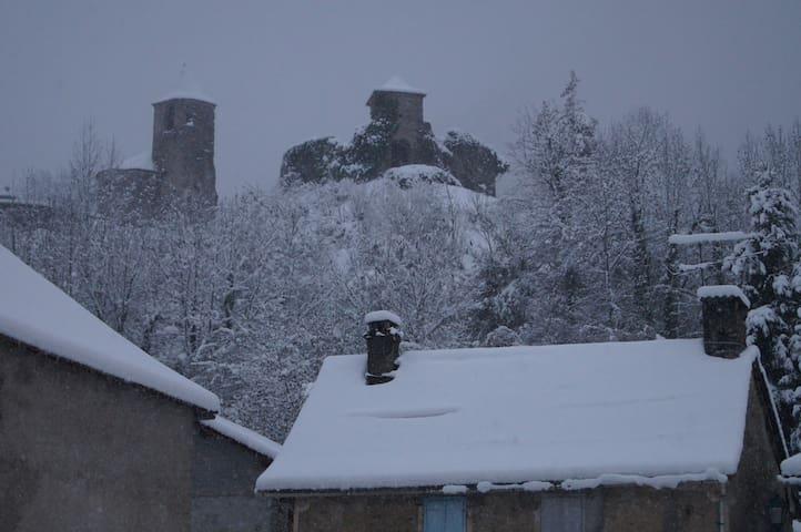 Vue sur le château depuis le jardin